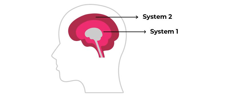 Lokalisation des System 1 und 2 im Gehirn
